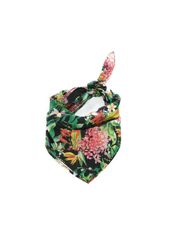 accesorios-multicolor-e216894-1